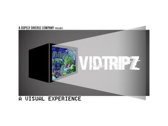 VidTripzLogo2